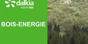 Quel est le parcours du bois-énergie ?